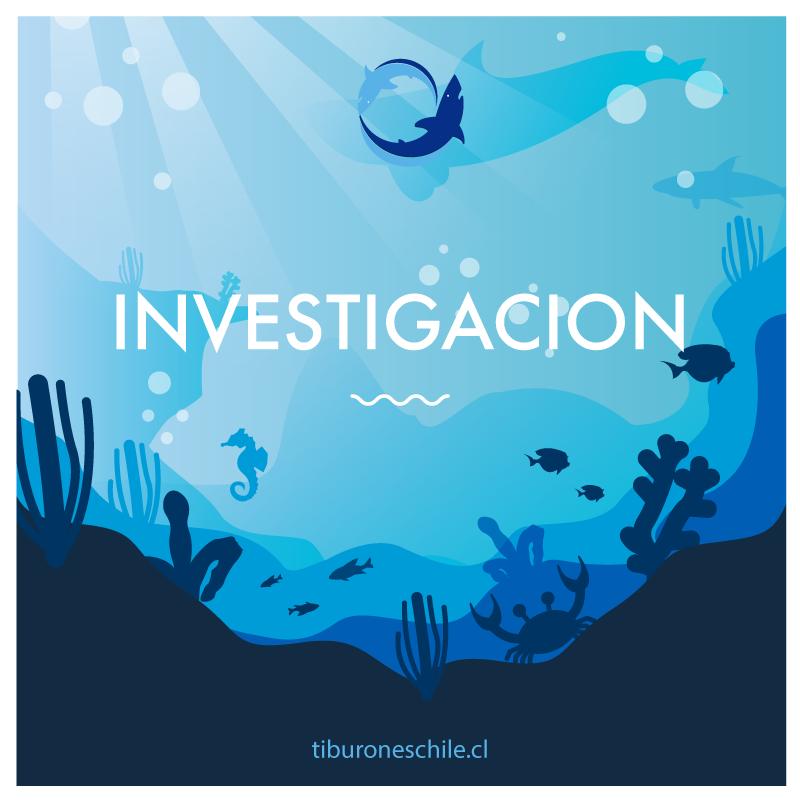 Investigacion - Programa de Conservacion de Tiburones